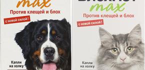 Medios Blohnet para gatos y perros: opiniones e instrucciones de uso