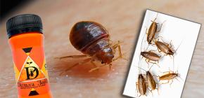 Remedio para chinches y cucarachas Zona delta: descripción y comentarios