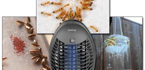 Revisión de trampas efectivas para insectos voladores y rastreros.