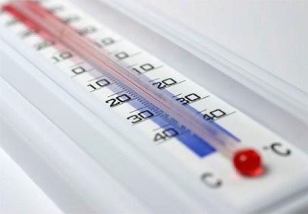 Tratamiento de temperatura de chinches: tratamiento de congelación o calor (o vapor)