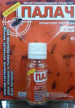 Remedio para los insectos domésticos del verdugo.