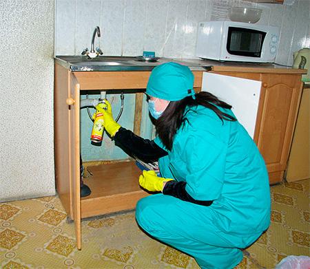 Los aerosoles deben rociarse en lugares donde los insectos puedan acumularse.