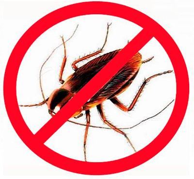 El uso de insecticidas modernos.