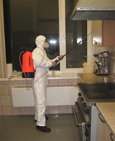 Trabajador de control de plagas trabaja plano