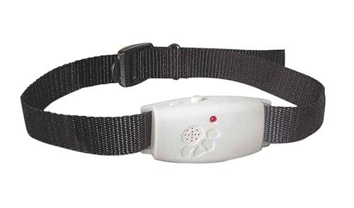 Foto de collar de ultrasonido pulgas para perros.