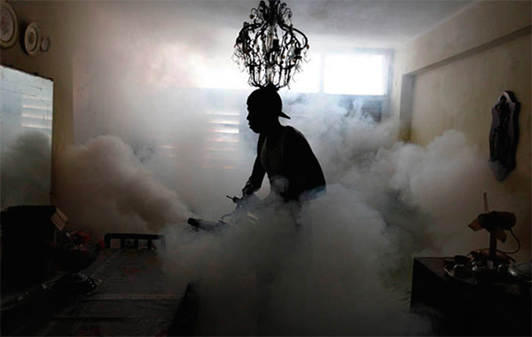 Cuando se procesa el local con niebla caliente, también se crea un aerosol insecticida muy fino.