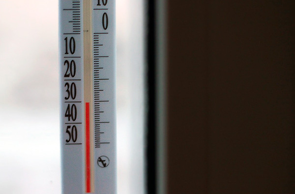En lugar de morir de hambre los venenos, se pueden destruir por congelación (muebles, ropa o incluso todo el apartamento).