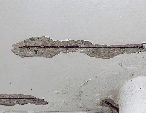 Las grietas en el techo, las paredes o el piso también pueden ser el camino a través del cual las plagas ingresan al apartamento.